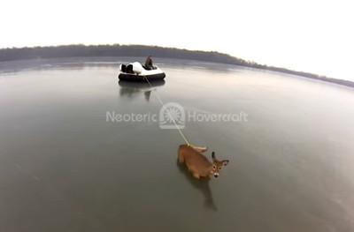 http://photos.neoterichovercraft.com/galleries/history/history/photos/deerrescue.jpg