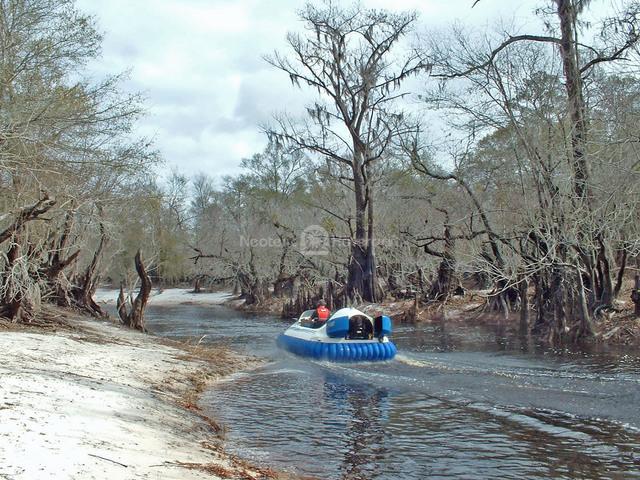 Suwannee River Cruise